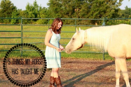 5 Things My Horse has Taught Me