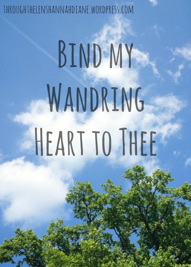 Bind My Wandering Heart  | Through The Lens of Hannah Diane