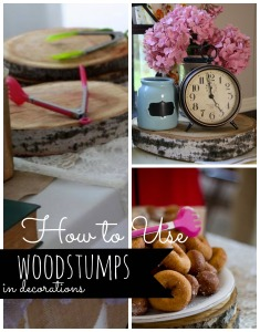 Woodstumps in Decor  | Through The Lens of Hannah Diane