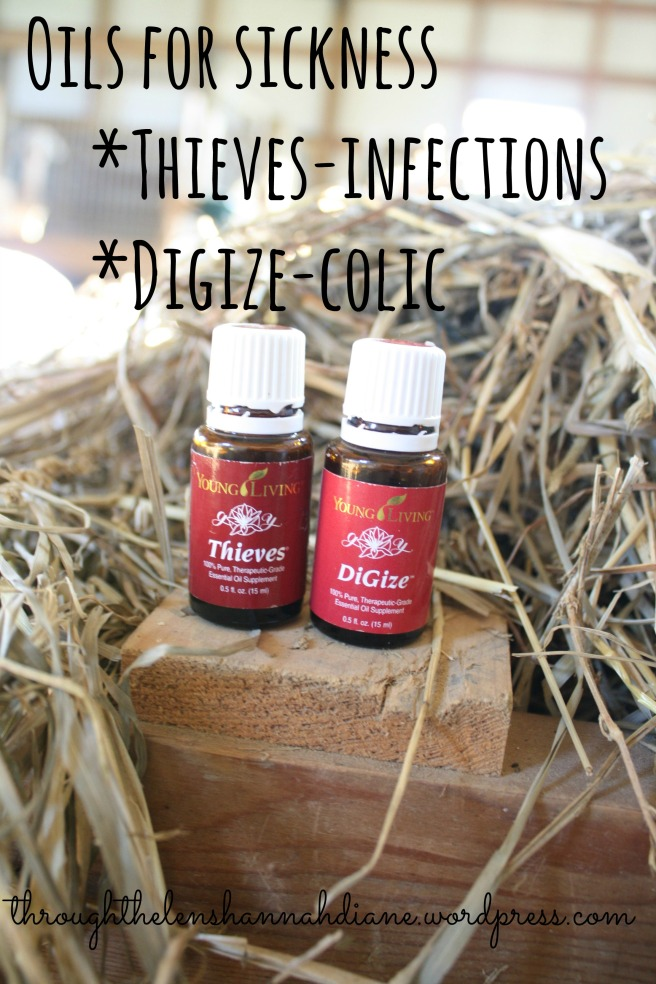 Oils for sickness
