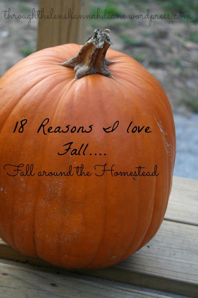 18 Reasons I love Fall