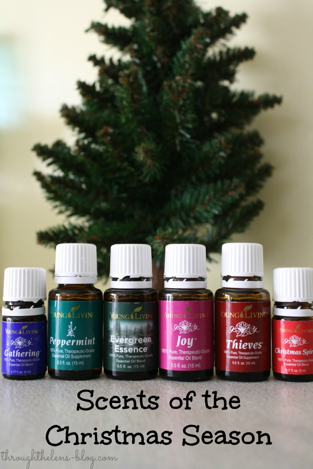 Scents of Christmas