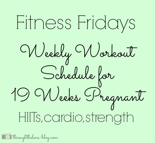 19 Week Workout Schedule