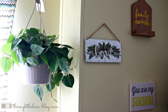 Why we keep houseplants.jpg