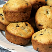 {the best} Chocolate Chip Muffins